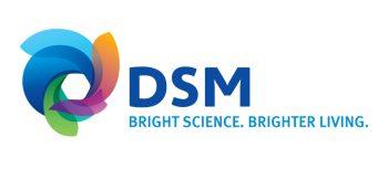 DSM Logo 1